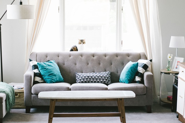 grey tufted couch with throw pillows and coffee table in front of a window